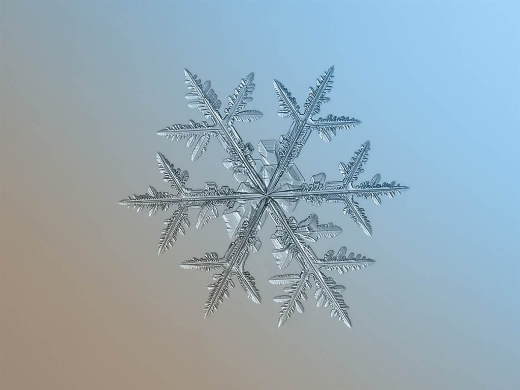 ss-snowflakes-131206-10-ss_full